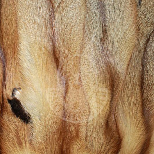 Шкурки лисицы пресно-сухие (Красная)