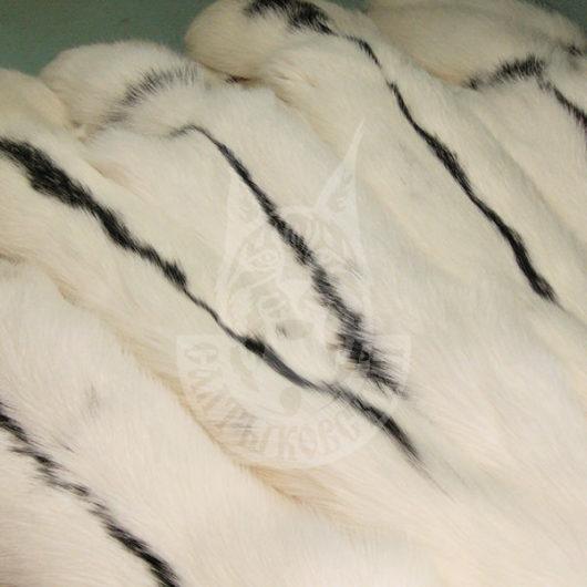 Шкурки лисицы выделанные (Снежная)