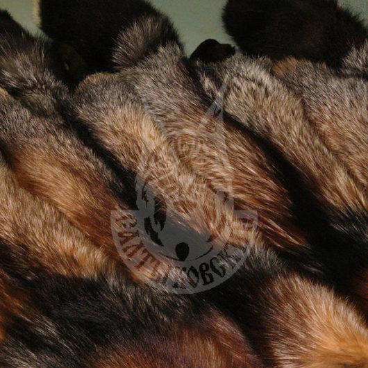 Шкурки лисицы выделанные, окрашенные (Сиводушка)