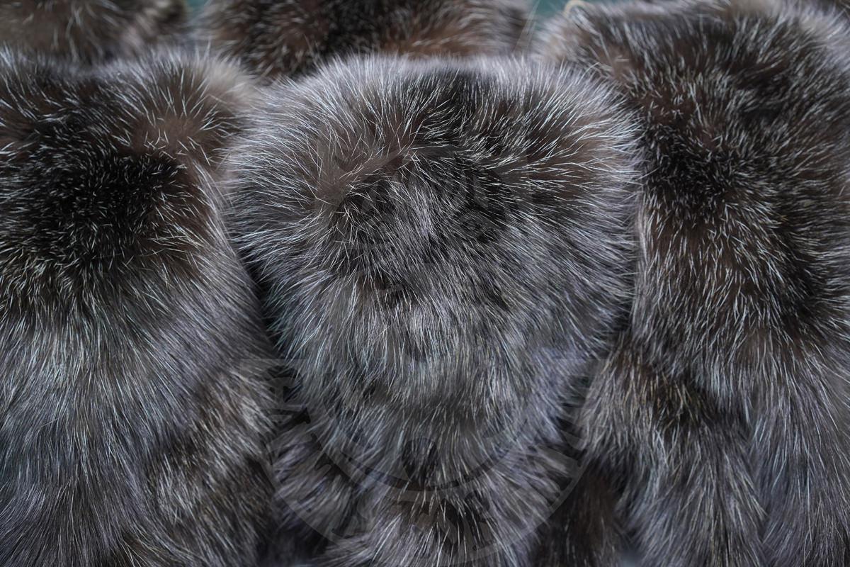 Приглашаем на Saga Furs в июне 2019 года!