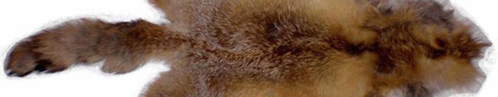 Выделка меха при производстве меховых изделий
