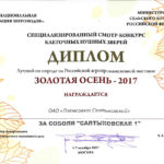 Золотая Осень 2017-09-04